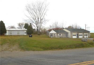 Photo of 10987 Sandy Hill, Dansville, NY 14437