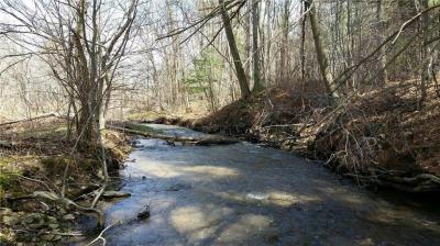 Photo of County Road 8, Wirt, NY 14739