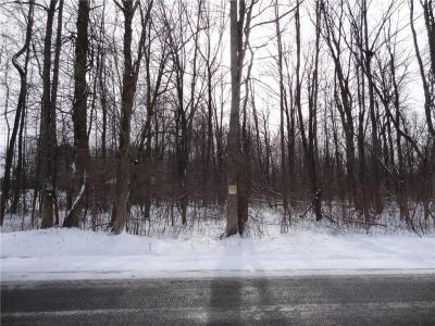 Photo of 00 Beadle Rd, Sweden, NY 14420