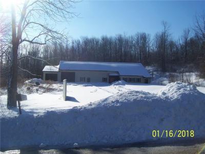 Photo of 5542 Podger Road, Sodus, NY 14505