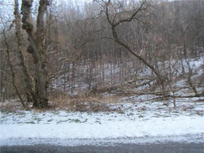 Photo of Strong Hill Road, Naples, NY 14512