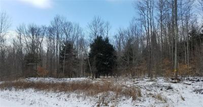 Photo of 4008 Dry Brook Road, Amity, NY 14813