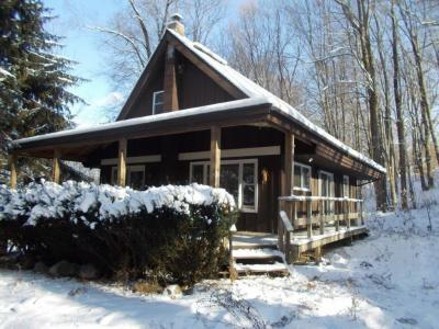 Photo of 8721 Lawrence Gull Road, Springwater, NY 14572