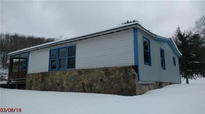 Photo of 6606 Pleasant Valley Road, Wirt, NY 14739