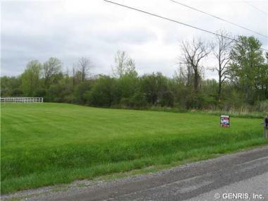 6251 Stone Hill Rd, Livonia, NY 14487