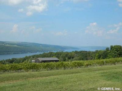 Photo of 8636 County Route 87, Urbana, NY 14840