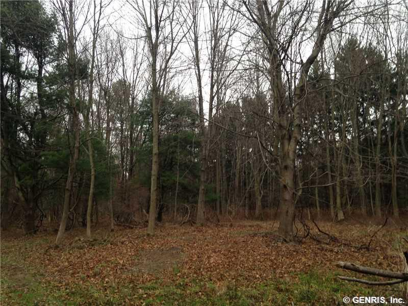 Lot 1 Whiting Road, Webster, NY 14580