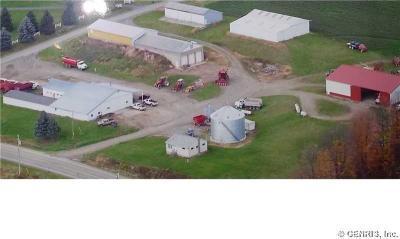 Photo of 2847 State Route 21, Wayland, NY 14572