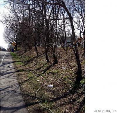 Photo of 000 Elmgrove Road, Greece, NY 14626