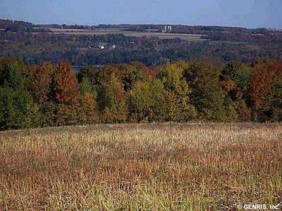 Photo of 1 Sunrise Hill, Skaneateles, NY 13152