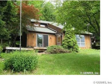 11007 Overview Dr, Grove, NY 14884