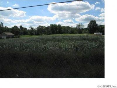 Photo of Route 36, Leicester, NY 14481