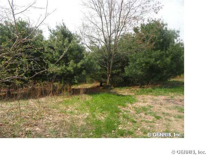 Wells Curtice Rd, Lot #2, Canandaigua Town, NY 14424