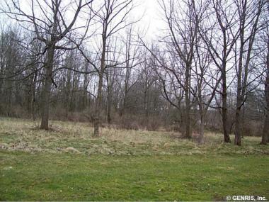 East Lake Rd, Livonia, NY 14487