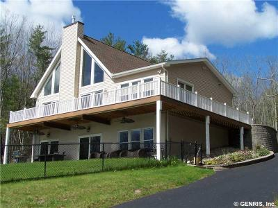Photo of 16641 West Lake Rd, Pulteney, NY 14418