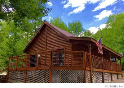 Photo of 6026 West Willow Pt, Canadice, NY 14471