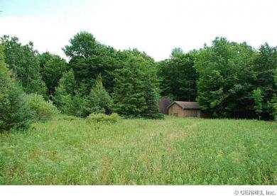 6440 County Route 7, Prattsburgh, NY 14873