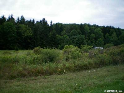 Photo of 5393 County Road 17, Friendship, NY 14739