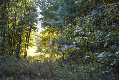 Photo of 3649 State Route 69, Mexico, NY 13114