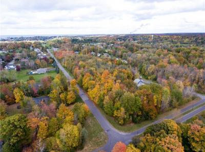 Photo of 21 Elizabeth Street, Oswego City, NY 13126