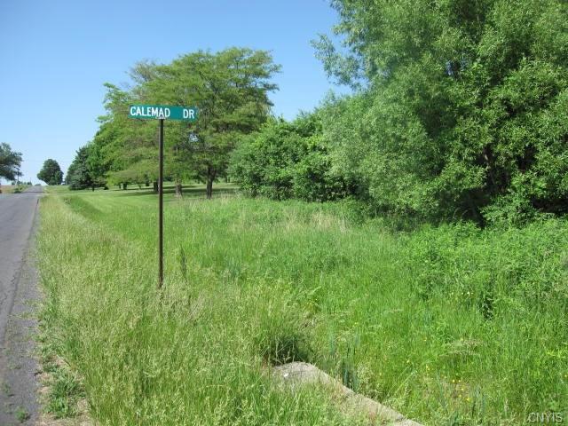 Lot #16 Calemad Drive, Sennett, NY 13021
