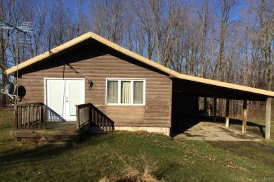 9175 West Hill Road, Allen, NY 14735