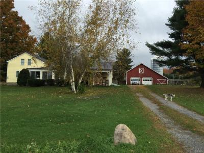 Photo of 102 County Route 41a, Richland, NY 13142