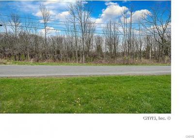Photo of Crow Hill Road, Skaneateles, NY 13152