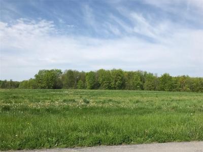 Photo of Lot 1A County Line Rd, Skaneateles, NY 13152
