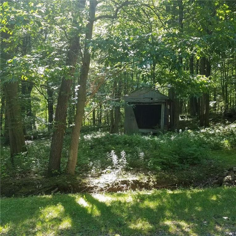 Creek Road, Sterling, NY 13156