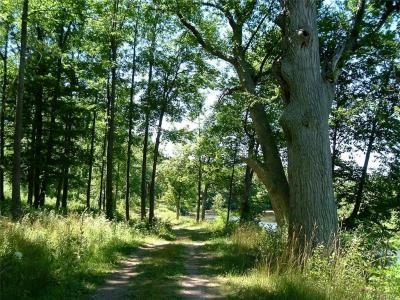 Photo of Ontario Shores Drive (23,24,25), Sterling, NY 13156