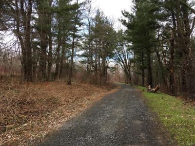 Photo of Irwin Road (48,49), Sterling, NY 13156
