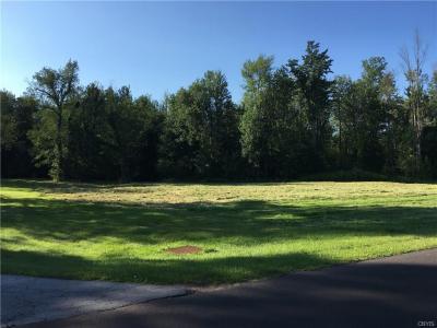 Photo of Regan Drive, Oswego Town, NY 13126