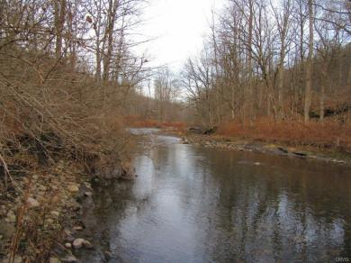 State Route 46, Boonville, NY 13309