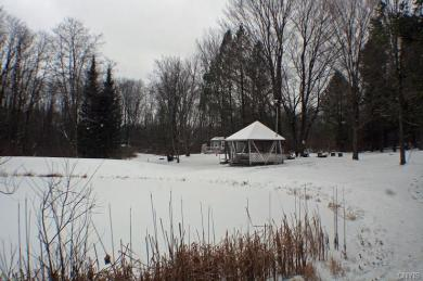 Scenic View Drive, Springwater, NY 14560