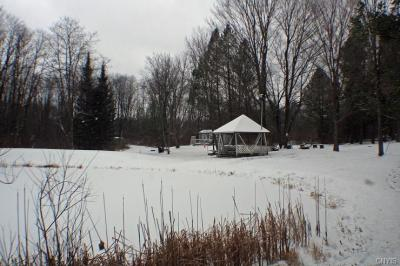 Photo of Scenic View Drive, Springwater, NY 14560