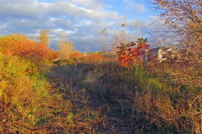 Photo of Buckley Road, Salina, NY 13088