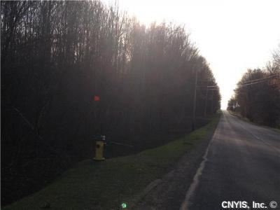 Photo of 0000 Hawk Road, Volney, NY 13069
