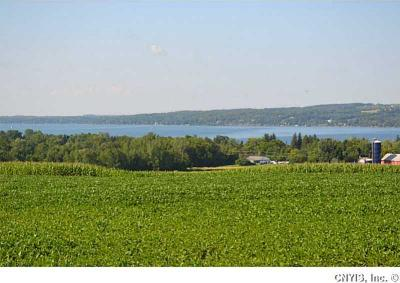 Photo of Lot 2 Heifer Street, Skaneateles, NY 13152