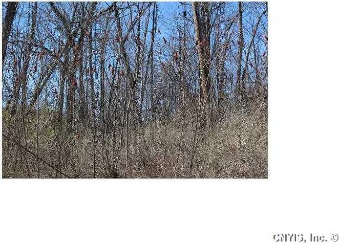 Lot 2 West Lake Road, Fleming, NY 13118
