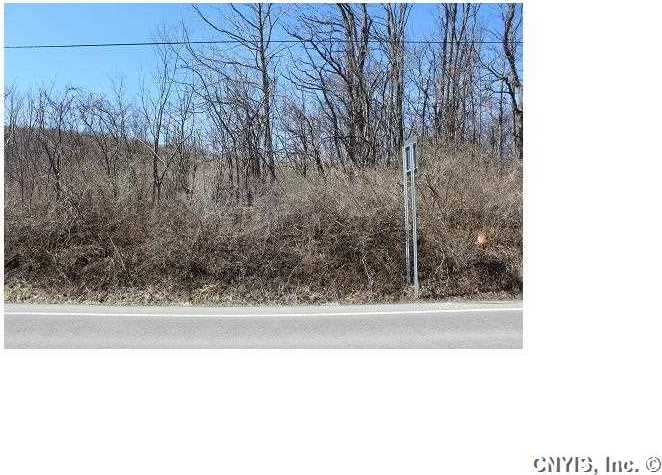 Lot 4 West Lake Road, Fleming, NY 13021