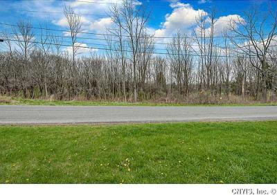 Photo of Crow Hill Rd, Skaneateles, NY 13152