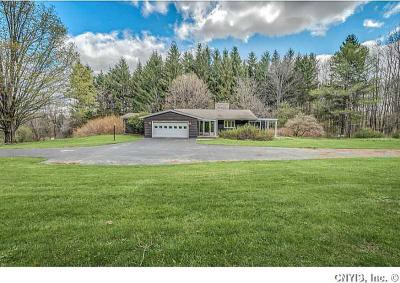 Photo of 4520 Syracuse Rd, Cazenovia, NY 13035