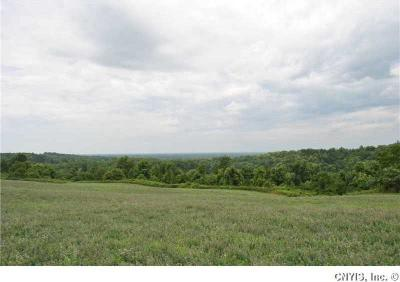 Photo of Pierson Rd, Manlius, NY 13066