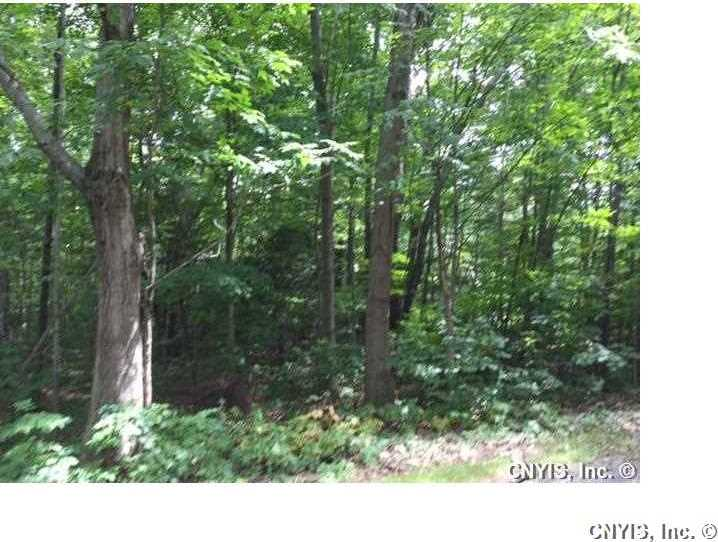 Lot 5 Cove Road, Sandy Creek, NY 13145