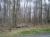 Lot 834 D1 Stag Run Road, Pocono Lake, PA 18347