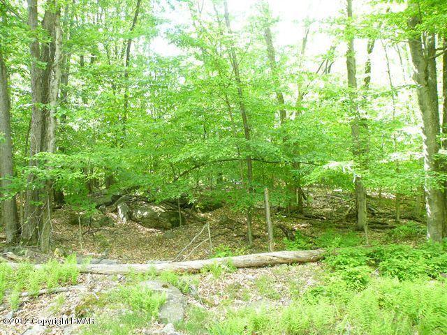 615 Locust Lane, Pocono Lake, PA 18347