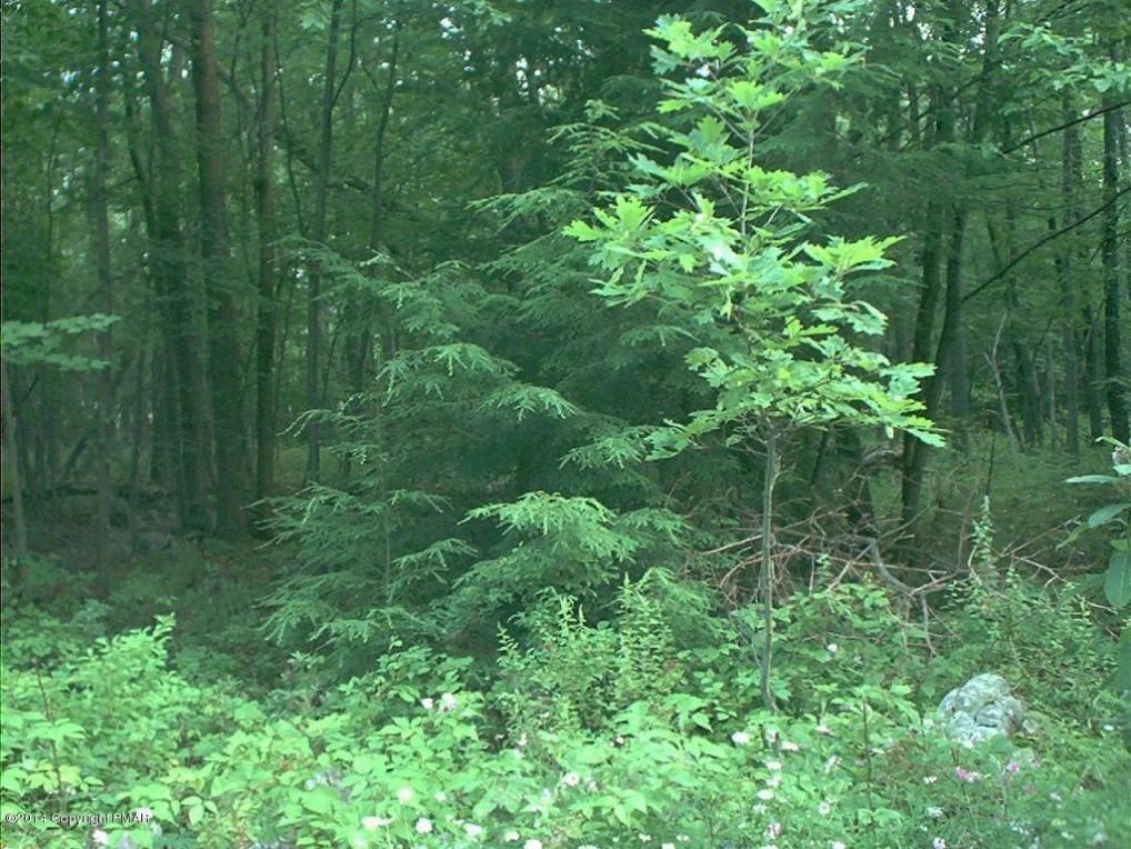 494 Redwood Dr, Albrightsville, PA 18210