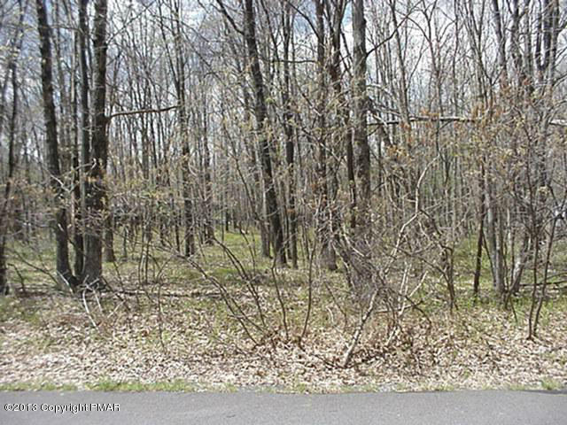 532 Towamensing Trail, Albrightsville, PA 18210