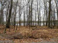 607 Cottontail Lane, Pocono Lake, PA 18347